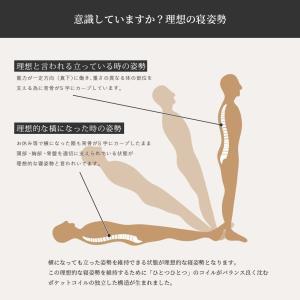 送料無料 ベッド マットレス付き 脚付きマットレスベッド シングル 6.5インチポケットコイル 「日本製」 マットレスベッド hotakebed 06