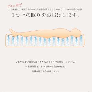 送料無料 ベッド マットレス付き 脚付きマットレスベッド シングル 6.5インチポケットコイル 「日本製」 マットレスベッド hotakebed 07