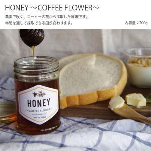 HONEY -COFFEE FLOWER- コーヒー 珈琲 coffee はちみつ ハチミツ 蜂蜜 ハニー HONEY IFNi イフニ|hotcrafts