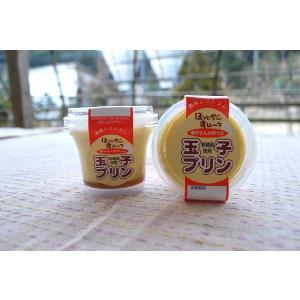 卵の美味しさ懐かしい! 玉子プリン(6個セット) (冷蔵便)|hotkan