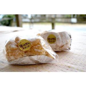超新鮮!朝取り卵のシュークリーム (冷凍便)|hotkan