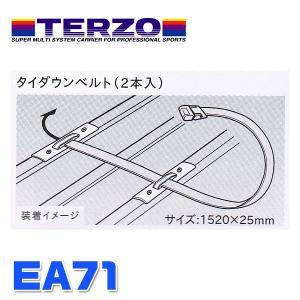 PIAA/ピア:TERZO アクセサリー タイダウンベルト ブラック 2本入/EA71|hotroadtirechains