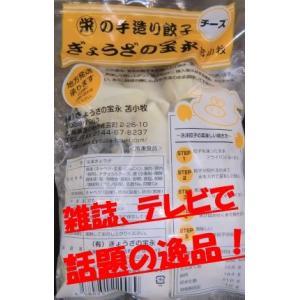 宝永のぎょうざ チーズ入り 375g入(約15個入)|houeisapporo