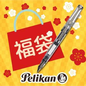 すぐに使える 割引クーポン配布中  特別生産品  ペリカン PELIKAN スーベレーン M805 デモンストレーター 刻印なしモデル|hougado