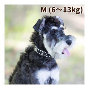 犬 首輪 革 レザー ASHU サイドループレザーカラー Mサイズ
