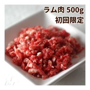 犬用 生肉 ラム肉 500g 荒挽き 小分けトレー 初回限定送料無料 スターターパック 生食 手作り食【a0030】