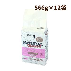 ワイルドボアーとターキー生肉を使用した幼犬・子犬・小型犬の最高品質の総合栄養食  ●原材料 ワイルド...