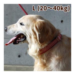 犬の首輪 ASHU ステップカラー Lサイズ 大型犬用