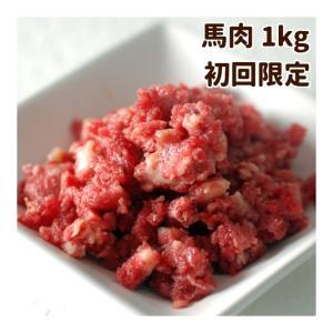 初回 送料無料 犬用 生肉 新鮮 馬肉ミンチ 小分けトレー 1kg スタータ