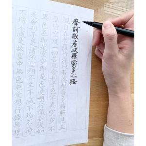 写経スタートセット5枚写経用紙なぞり書き般若心経リラックス癒し効果集中お家時間仏壇仏教御供納径 hourin-shop
