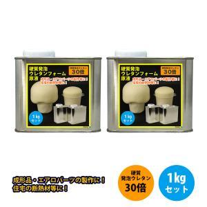 硬質発泡ウレタンフォーム原液 30倍 1kgセット 210-35IK