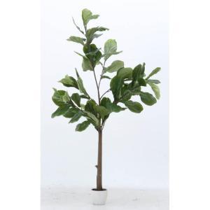不二貿易 フェイクグリーン 観葉植物 フィカス カシワバゴム 52691 19964