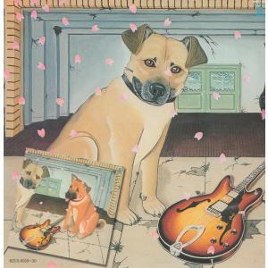 【2CD】V.A. / 春一番ライブ'79|hoyhoy-records