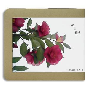 花と路地 / 2011.02.25 / 440 :ホイホイレコードだけ販売 hoyhoy-records