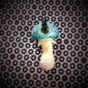 Eyeball Mushroom:ブローチ/テング目玉茸:隔離棟18号室 大森タケシ:ホイホイレコードだけ販売】|hoyhoy-records