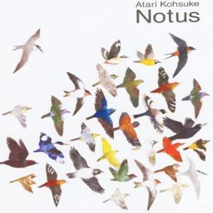 【CD】中孝介 / ノトス|hoyhoy-records