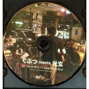 ぐぶつ meets 光玄-ホイホイレコードだけ販売:男性SSW|hoyhoy-records