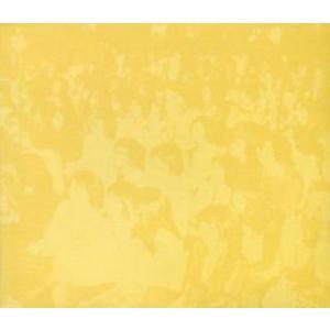 V.A. / '72 春一番コンサート・ライブ(2枚組)|hoyhoy-records