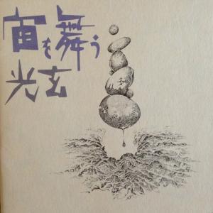 光玄 (こうげん)/ 宙を舞う -1stプレス|hoyhoy-records