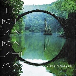 山口美央子 / トキサカシマ hoyhoy-records