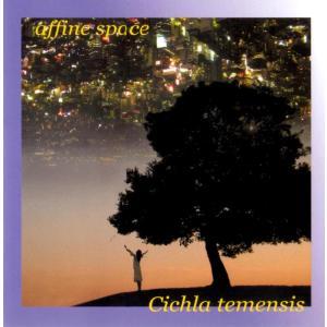 キクラ・テメンシス / affine space hoyhoy-records