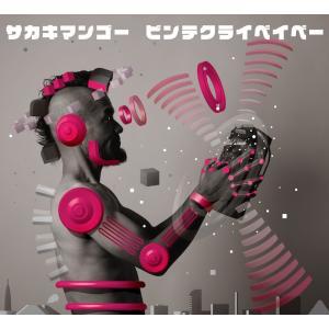 サカキマンゴー /  ビンテ・クライ・ベイベー hoyhoy-records