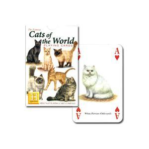【猫好き必見!世界のねこちゃん大集合】キャット・オブ・ザ・ワールド hrtg