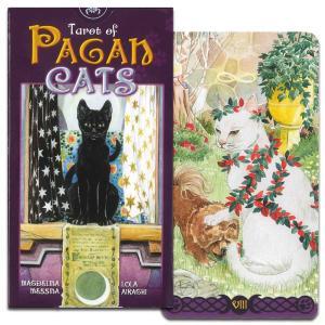 愛くるしい猫たちが描かれたタロットカード。 はしゃぎまわる猫たちやつんと澄ました猫たち…。  タロッ...