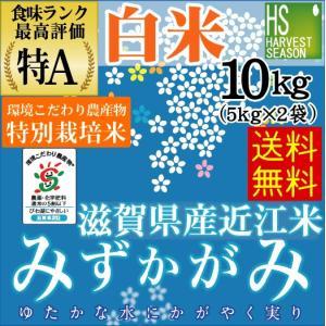 米 5kg×2袋 みずかがみ 滋賀県産 特別栽培米 精白米 ...