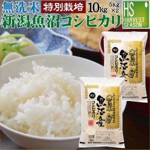 無洗米 10kg 5kg×2袋 新潟県 魚沼産 コシヒカリ P5倍 29年産 送料無料 特別栽培米 特A