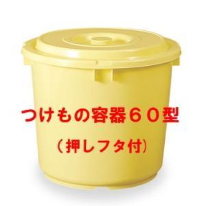 日本製 つけもの容器60型(押しフタ付)漬物容器60L(リットル)|hstsuge