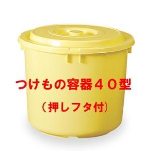 日本製 つけもの容器40型(押しフタ付)漬物容器40L(リットル)|hstsuge