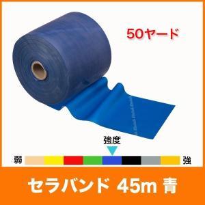 【スペック】 長さ/約45m(50ヤード) 幅/12.5cm 負荷/エクストラヘビー(強=8レベル中...