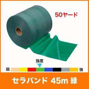 【スペック】 長さ/約45m(50ヤード) 幅/12.5cm 負荷/ヘビー(ヘビー=8レベル中のレベ...