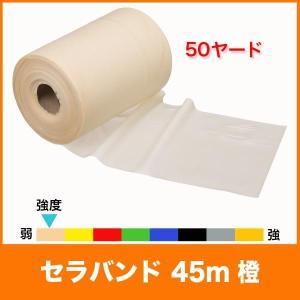 【スペック】 長さ/約45m(50ヤード) 幅/12.5cm 負荷/エクストラシン(弱弱=8レベル中...