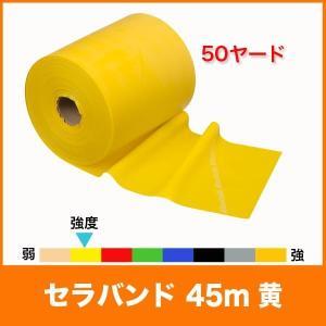 【スペック】 長さ/約45m(50ヤード) 幅/12.5cm 負荷/シン(弱=8レベル中のレベル2)...