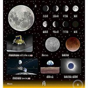 小学館の図鑑NEO 宇宙シール (まるごとシールブック小学館の図鑑NEO)