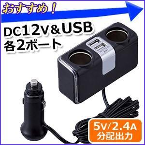 シガーソケット USB 増設 イルミラインUSBソケット F253 セイワ SEIWA カーチャージャー 車載用電源 DC12Vソケット2口 USBポート2口 ブルーLED 同時充電