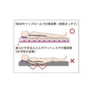 特典付き 幅95cm シングル 快眠健康敷ふとん キャップロール (ルネッタ)|hutonkan|11