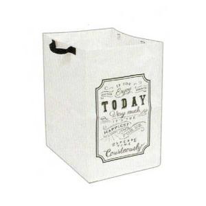 2個セット リサイクルケース ゴミ箱 おしゃれ 分別 (北海道、東北¥1000・沖縄、離島¥2000別途送料)の商品画像|ナビ