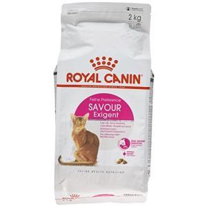 ロイヤルカナン FHN セイバーエクシジェント 猫用 2kg hyakushop