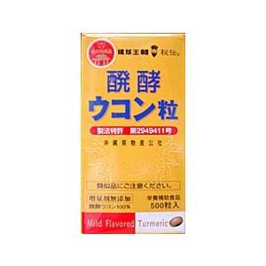 醗酵ウコン粒(500粒)×5個 送料無料|hyakusouen