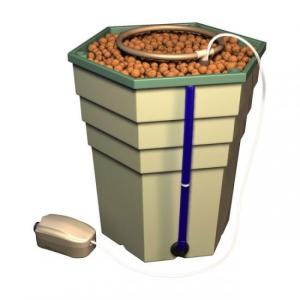 【水耕栽培】PowerGrower(パワーグロワー)|hydroponics