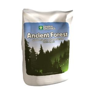 【水耕栽培】エインシェントフォレスト Ancient Forest 14L|hydroponics