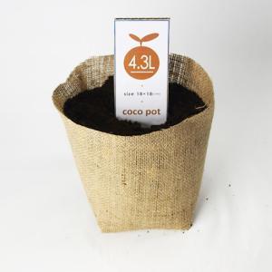 【水耕栽培】COCO POT 18cm (4.3L) 10枚セット|hydroponics