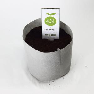 【水耕栽培】ECO POT 18cm (4.3L)  50枚セット|hydroponics