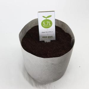 【水耕栽培】ECO POT 21cm (5.7L)  50枚セット|hydroponics