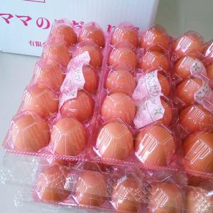 「タズミ商事」ママのこだわり卵 Mサイズ60個(クール便発送)|hyogo-tokusanhin