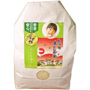 「たつの赤とんぼ米研究会」たつの赤とんぼ米 コシヒカリ(白米3 kg)|hyogo-tokusanhin