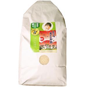 「たつの赤とんぼ米研究会」たつの赤とんぼ米 コシヒカリ(白米5 kg)|hyogo-tokusanhin